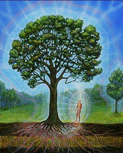 Spiritual Symbiosis - Body symbology to empower Health and Life!